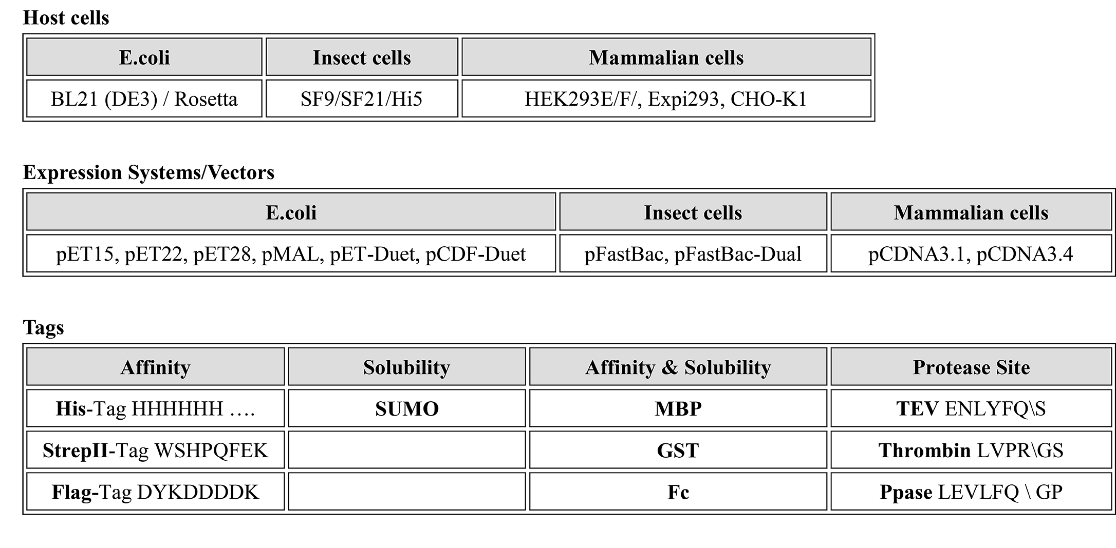 1.2.1-Protein Engineering, Expression and Purification-1.png